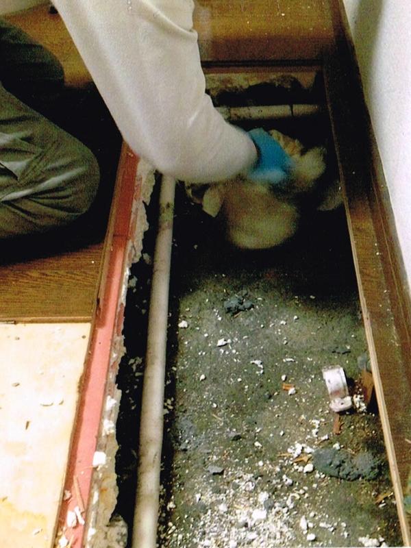 給湯管漏水修繕(フローリング補修)のリフォーム1